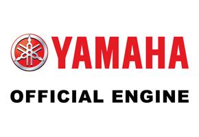 Yamaha_20100223_290x200